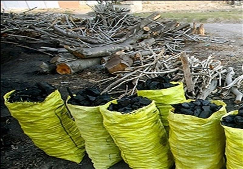 بیش از 10 تن زغال قاچاق در کرمانشاه کشف شد