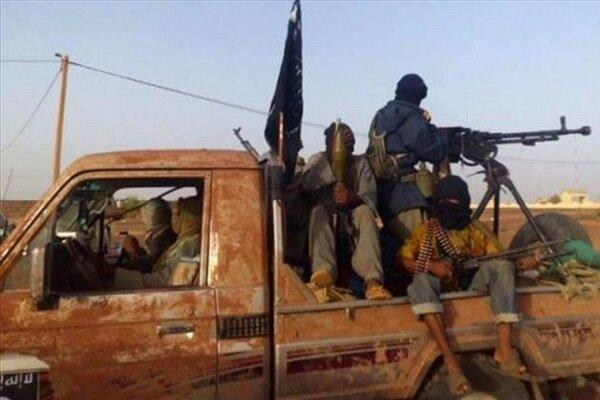حضور گسترده عناصر القاعده در جبهه مأرب با حمایت عربستان