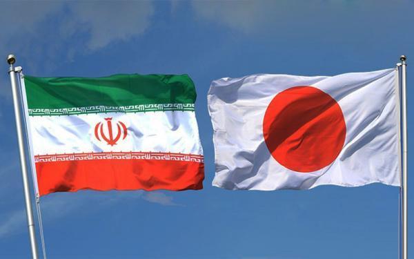 پژوهشگران ایران و ژاپن همکاری علمی می کنند