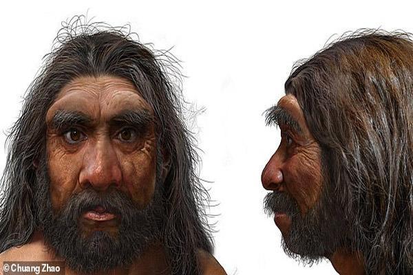 شناسایی جد درشت اندام انسان در 146 هزار سال پیش
